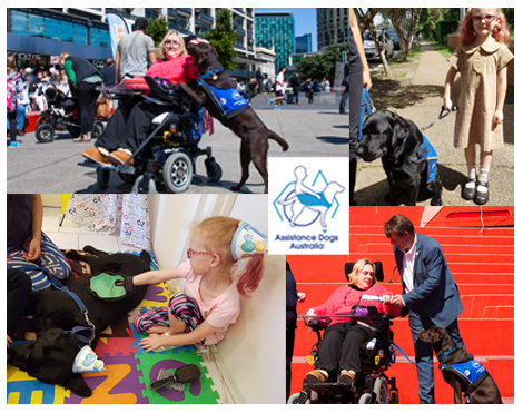 Assistance-Dogs-Aus-nominated-for-Sutherland-Shire-Community-Group-of-the-Year-2018.jpg