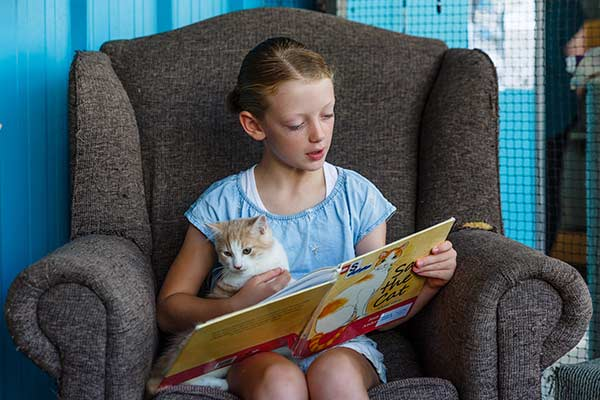 girl read a book with a cat on her lap