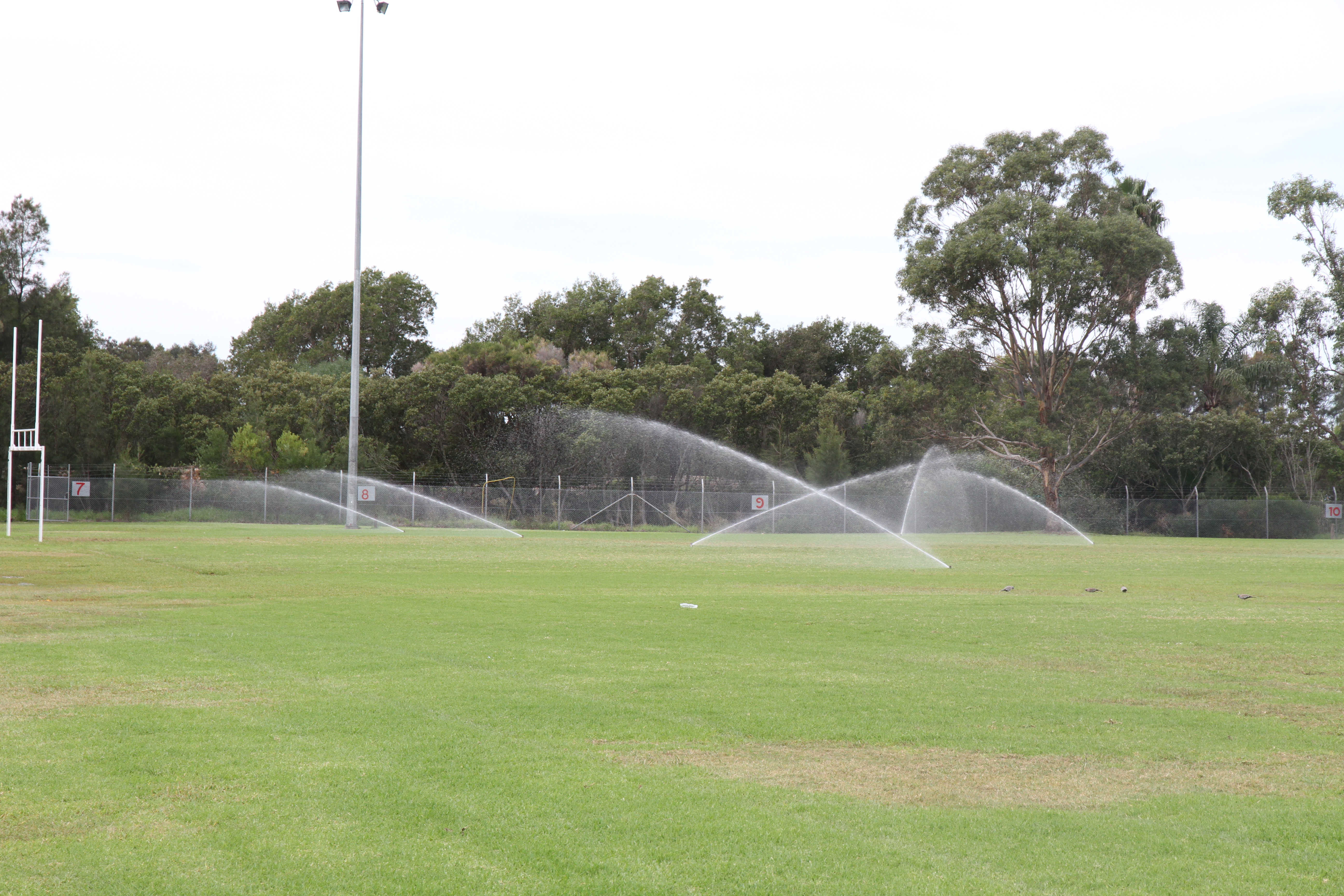 Oval with sprinklers running