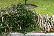Waste accepted at clean up
