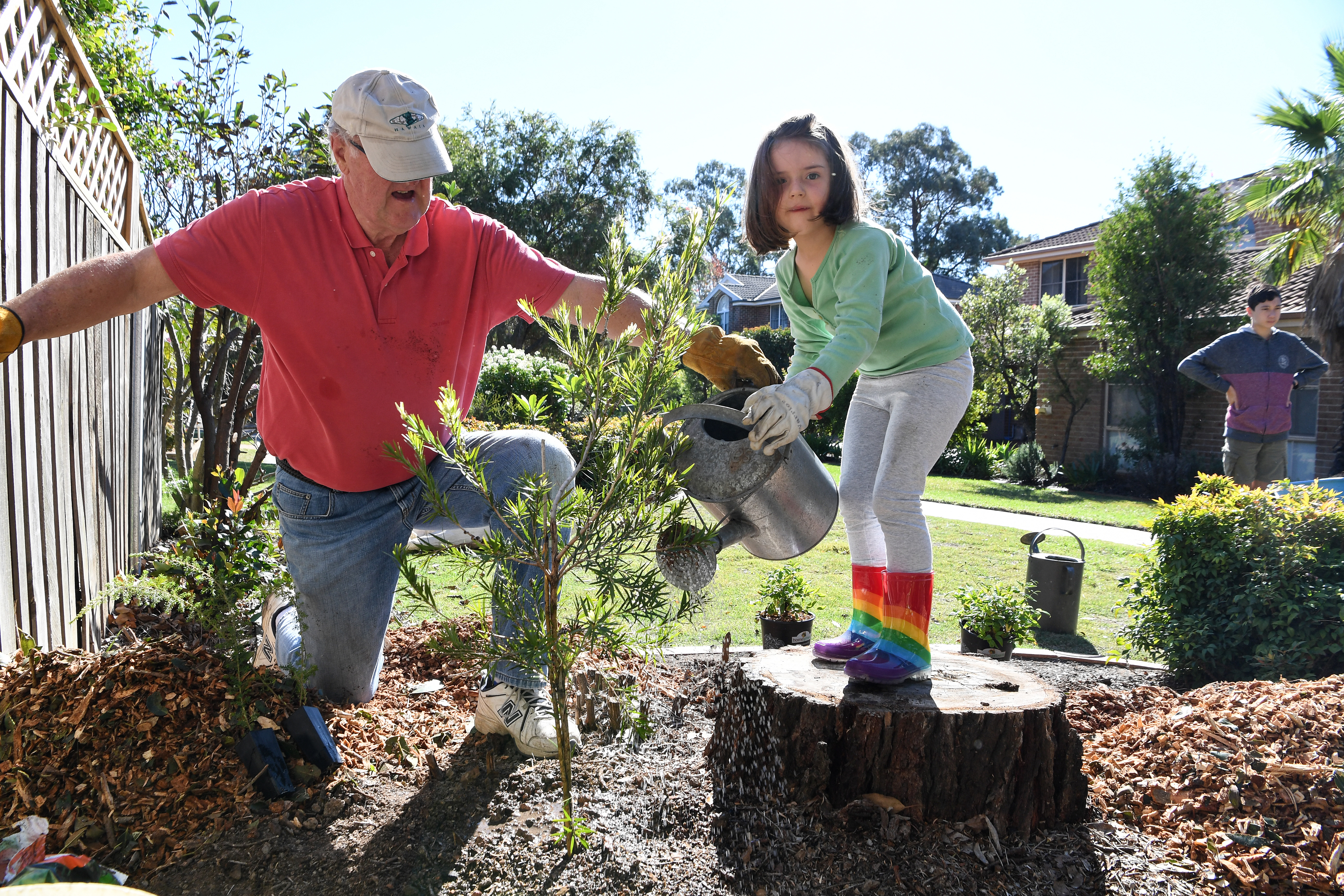 residents planting and watering trees in local bushland