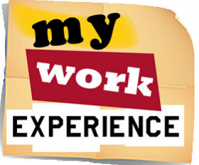 work experience sutherland shire council